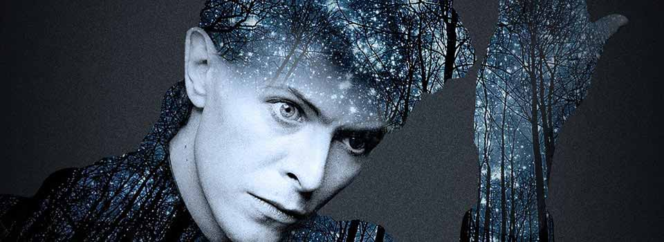 David Bowie Home